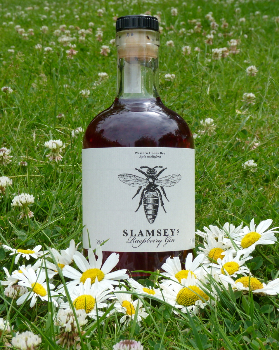 Slamseys Gin amongst summer daisies