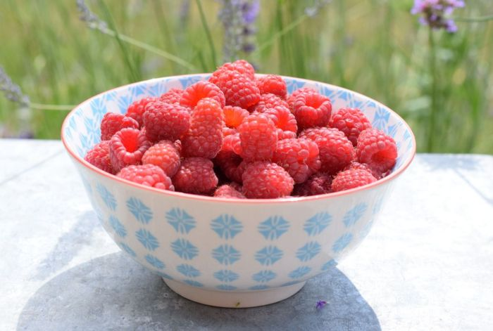 Raspberries in bowl in garden