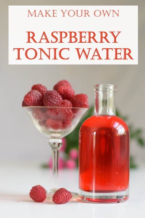 Make your own raspberry tonic water