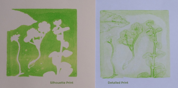 Silhouette Print and Detailed Print of plants using jelly plate