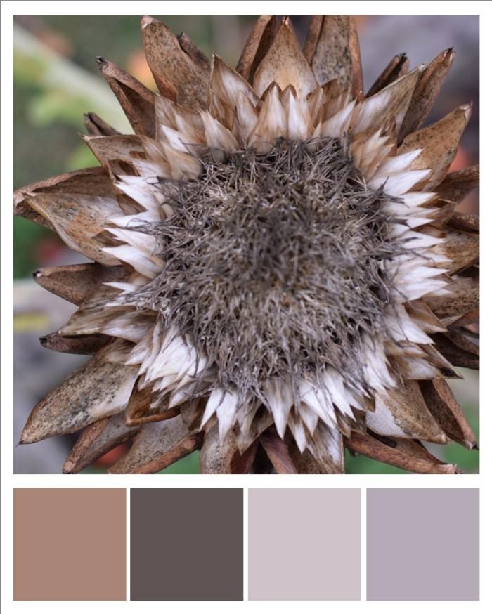 late summer artichoke