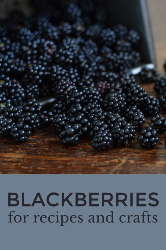 Plenty of ideas for using blackberries. Simple recipes including Blackberry Vinegar and Blackberry Tart. Natural dye techniques for fabric and yarn.