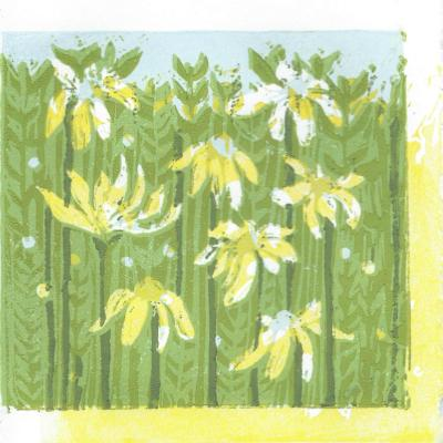 mayweed reduction print error