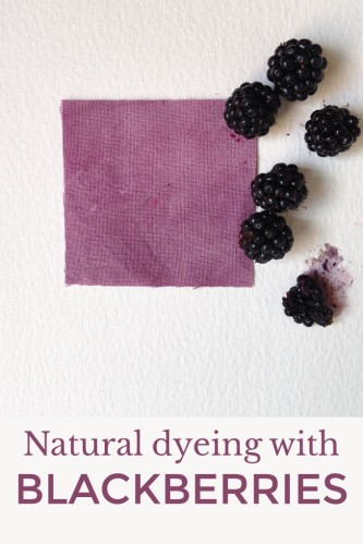 How to use blackberries and brambles as natural dye for fabric and yarn. Vat dyeing and contact bundle dyeing. Autumn craft.