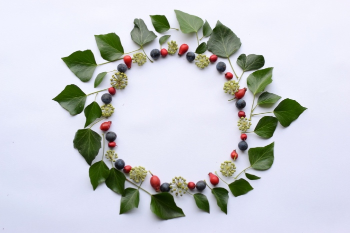 circle using sloes, hips, haws, ivy flowers and leaves