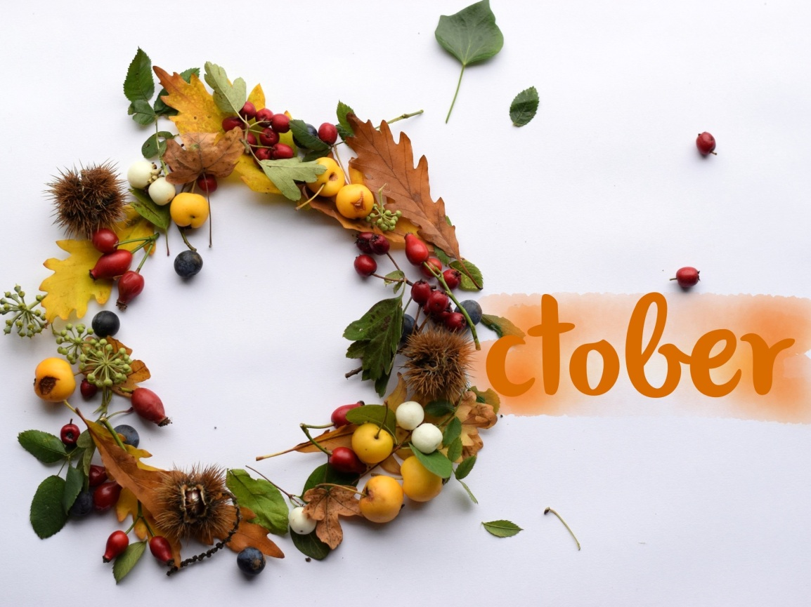 October circle of autumn leaves and berries