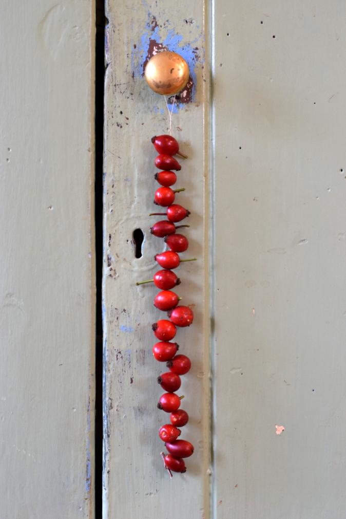 string of rosehips hanging from door handle
