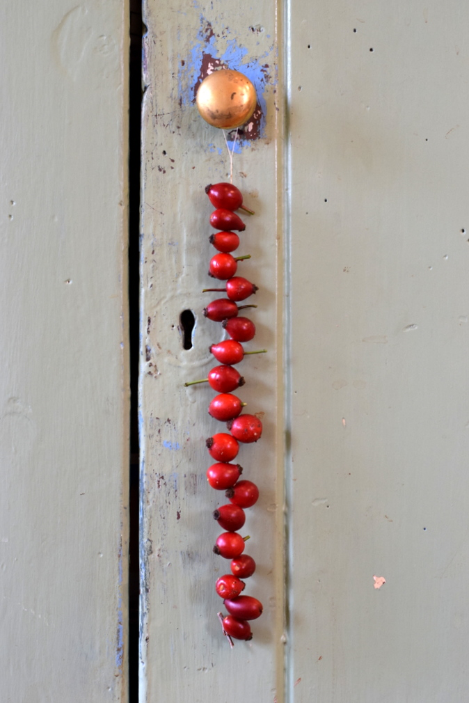 string of rosehips hanging from door handle