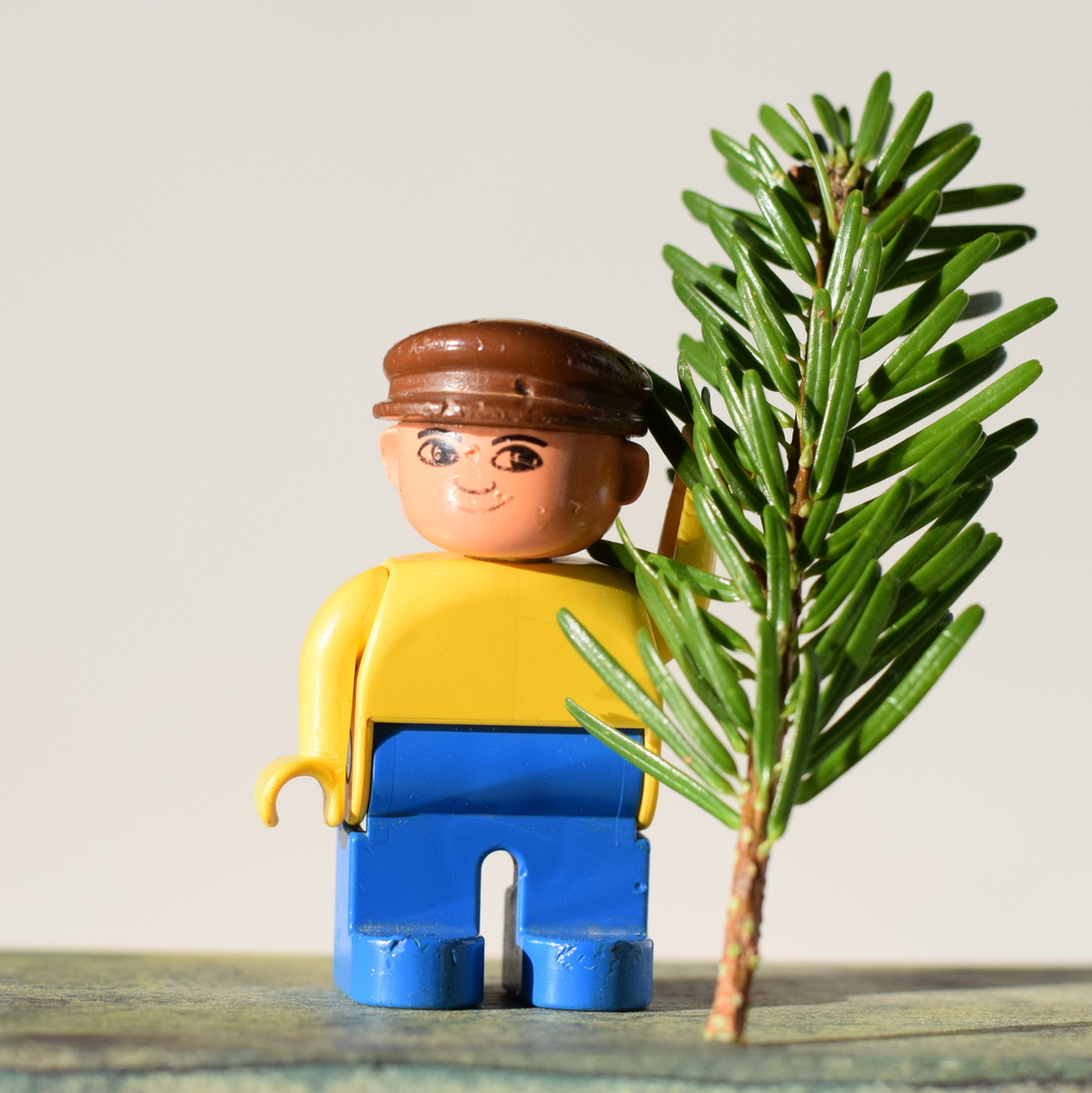 Carrying home the Christmas tree Duplo man