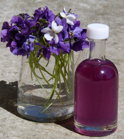 violet syrup