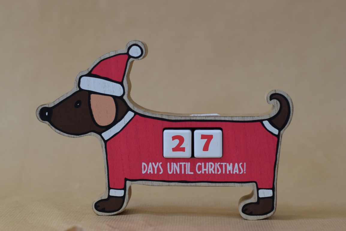How many days until Christmas festive dog
