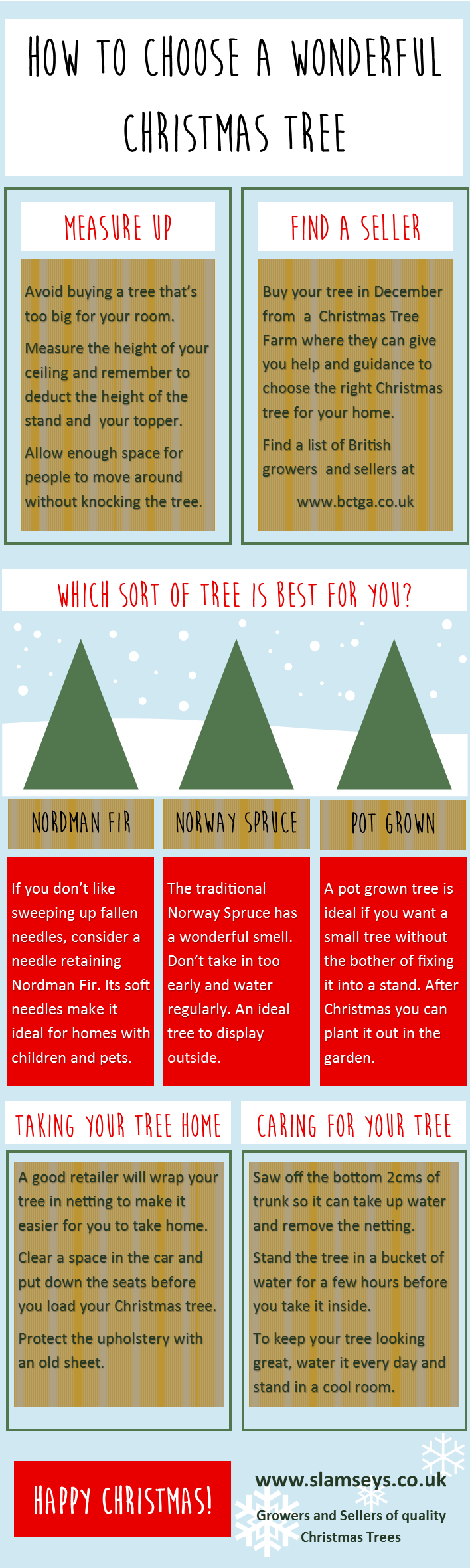 How to choose a wonderful Christmas Tree infographic