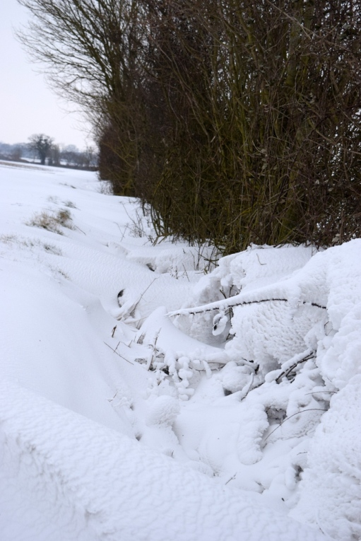 Snow drifted into ditch and hedge