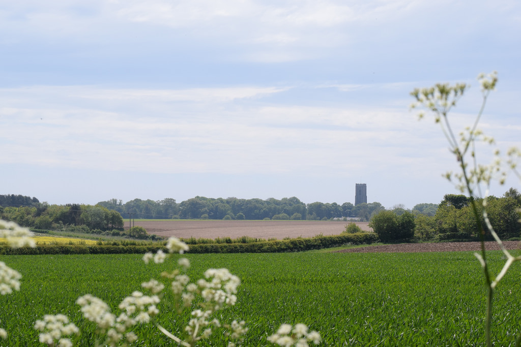 Arable fields on Paston Way, Norfolk