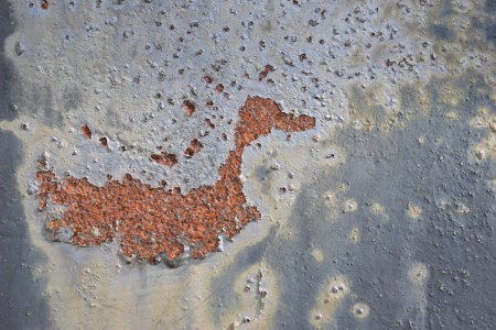 Image of duck formed by rust on painted metal