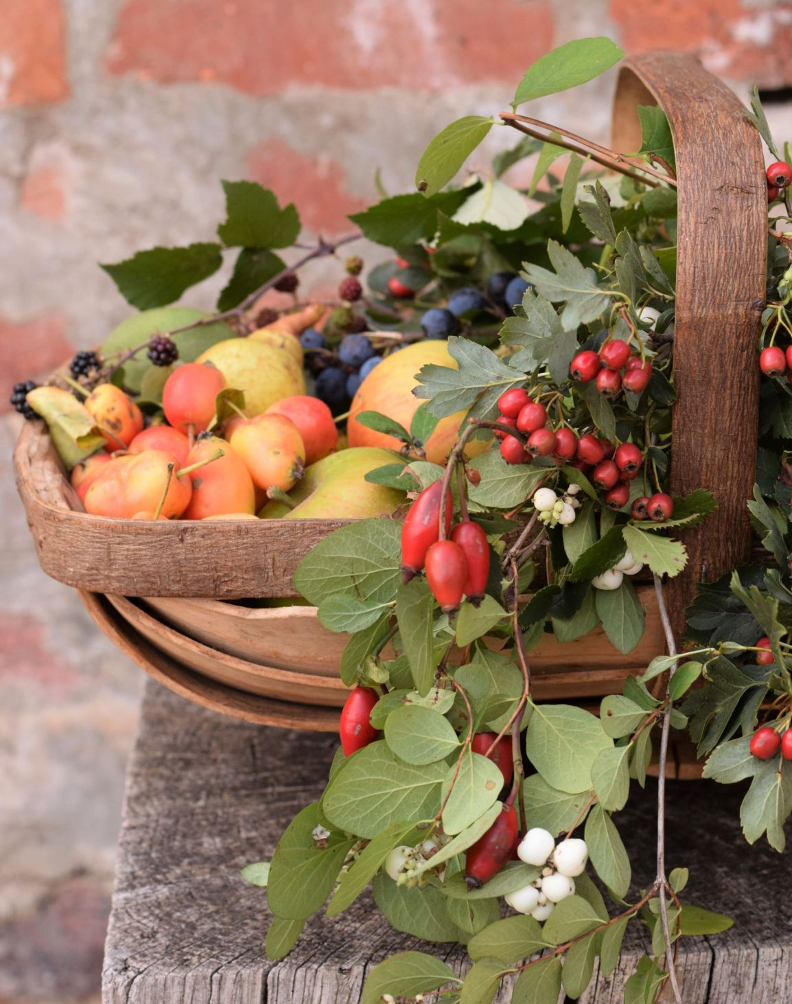 Wild fruits and berries in a trug