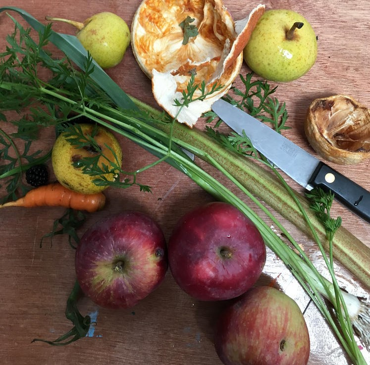 carrot, wild pear, orange skin, carrot, apples, rhubarb and knife for printing