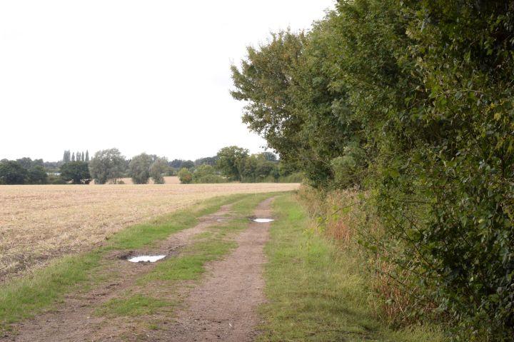 Public bridleway through Essex farmland in September