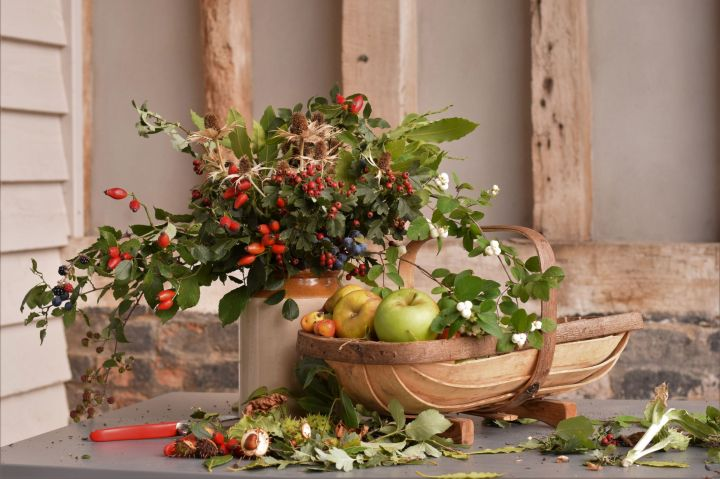 collection of September foliage, berries and fruit