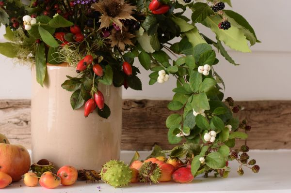 September collection of fruits, berries, foliage from the hedgerow