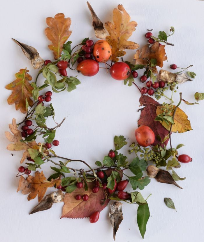 autumn circle of leaves and berries
