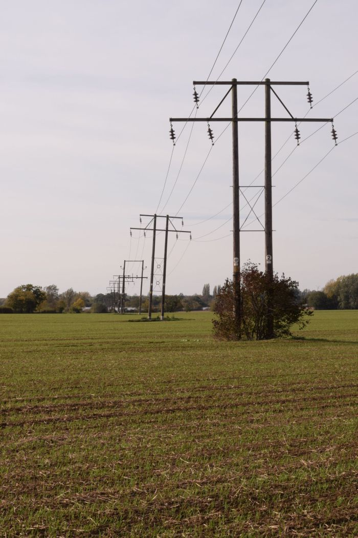 high voltage wires across wheat field