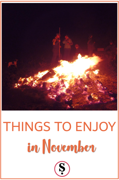 Things to enjoy in November bonfire party