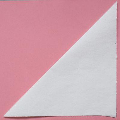 Making flat paper snowflake step 1