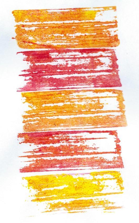 Print made with rhubarb stem
