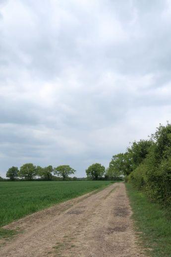 Farm track at Slamseys Farm in May