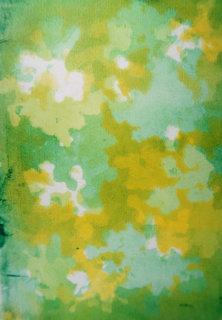Silhouette print of elderflower using jelly plate