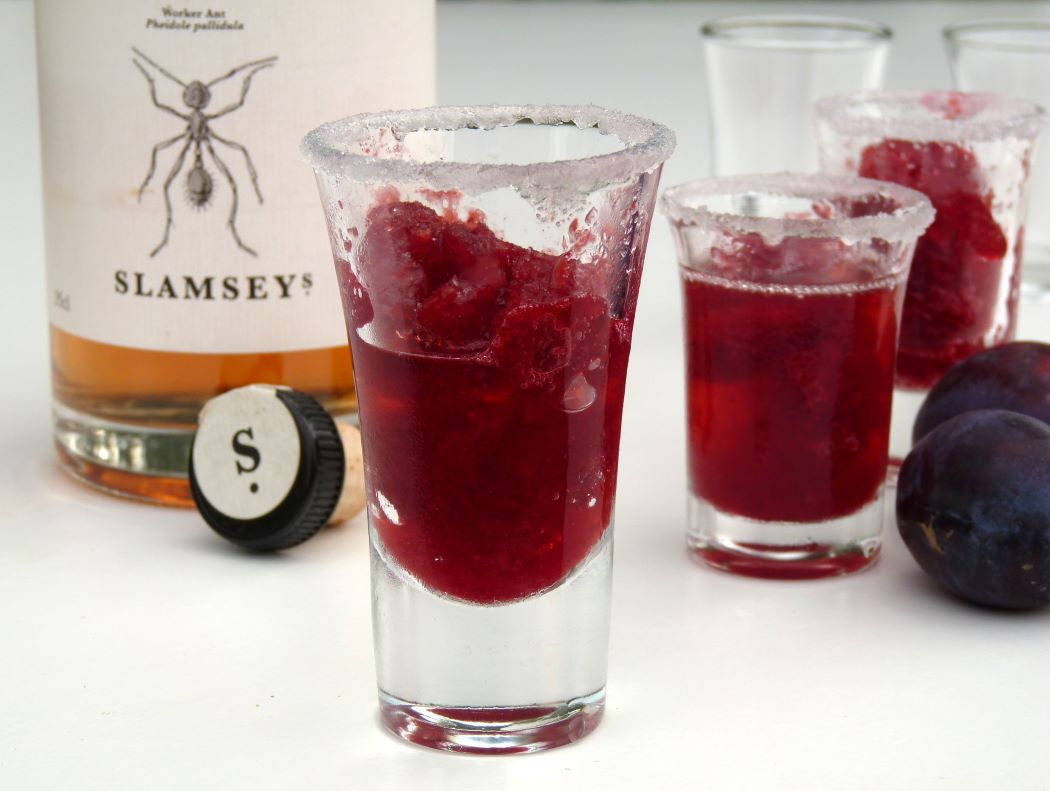 iced plum gin in shot glasses with bottle Slamseys Plum gin