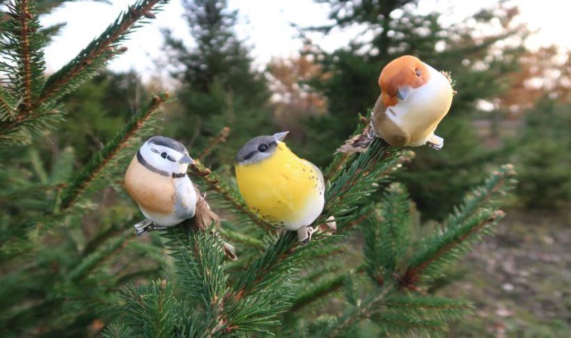 Christmas bird decorations on Christmas tree