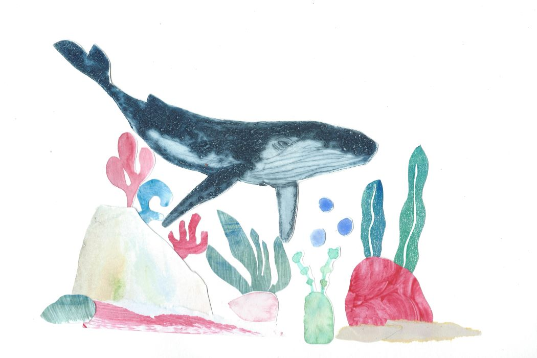 Collage of whale and the seabed