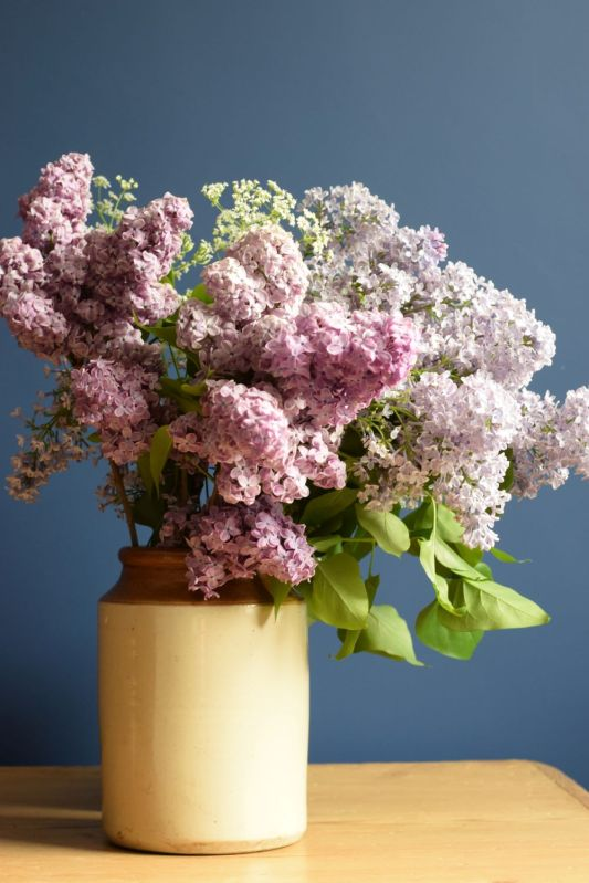 Jar of lilac and cow parsley flowers