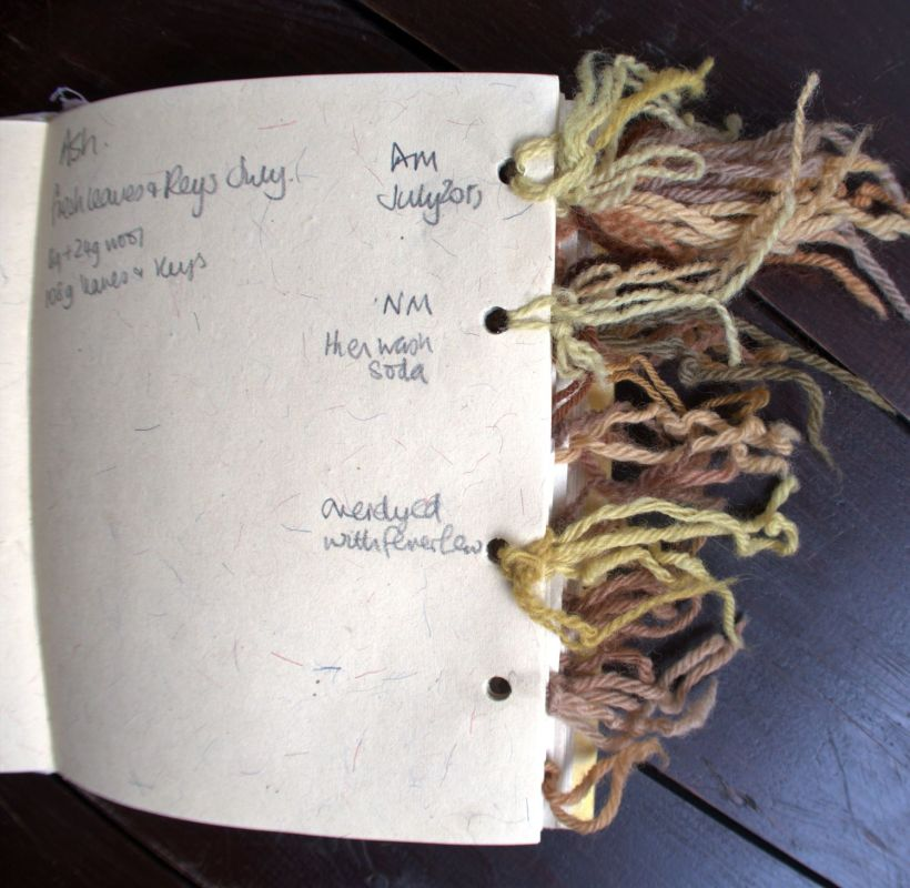 Yarn dyeing diary with coloured yarns